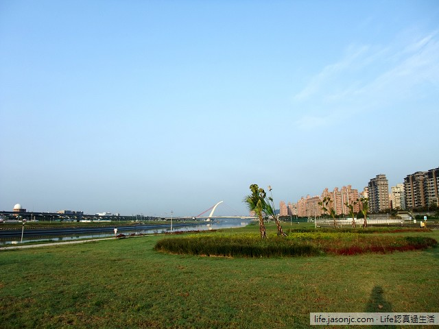 在美堤河濱公園發現迷漾森林 | 台北內湖