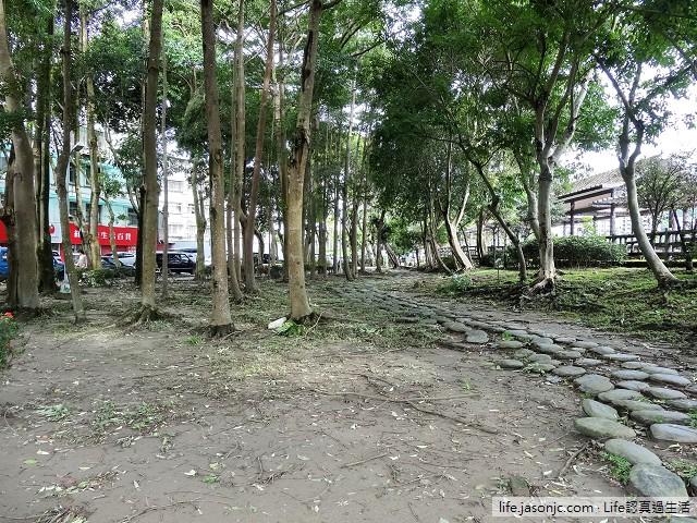 麥德姆颱風後的碧湖織屋 | 北市內湖